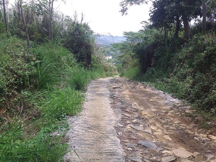 jalan menuju cioray