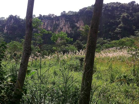Tebing Cioray